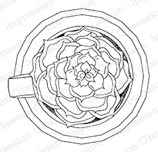 Tea Cup Succulent Stamp Set