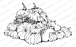 Pumpkin Harvest Stamp
