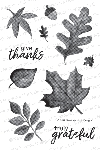 Shades of Autumn Stamp Set