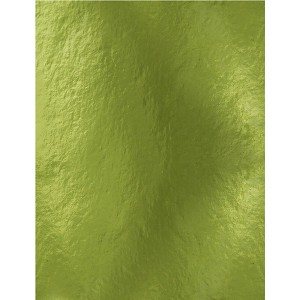 Mirror Glossy Cardstock 8.5 x 11 Holly Green